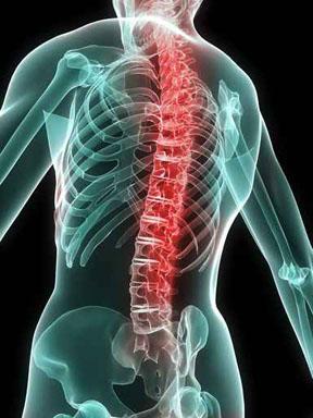 Заболевания позвоночника, лечение позвоночника, остеопатия